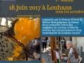 Exposition Rotary Club de Bourgogne à Louhans 2017