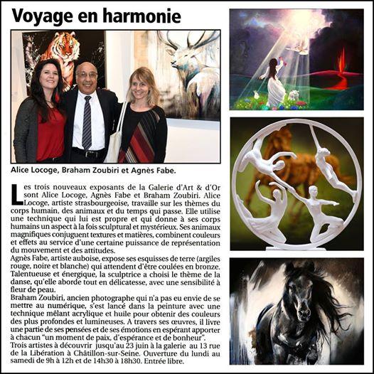 exposition-agnes-fabe-chatillon-sur-seine